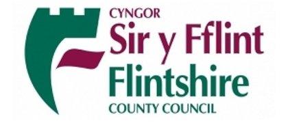 Flintshire Council