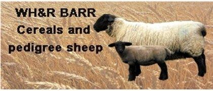 W.H. & R. Barr