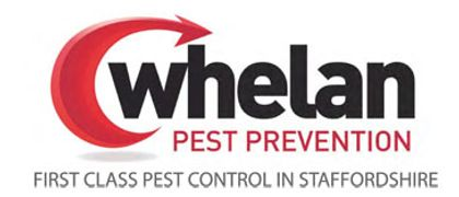 Whelan Pest Prevention