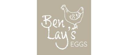 Ben Lays Eggs