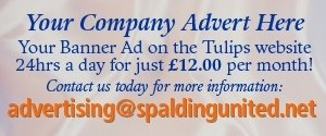 SUFC Advertising