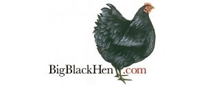 Big Black Hen