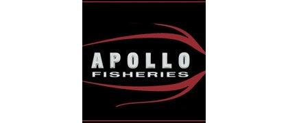 Apollo Fisheries