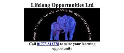 Lifelong Opportunities