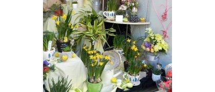 Four Seasons Florist & Greengrocer
