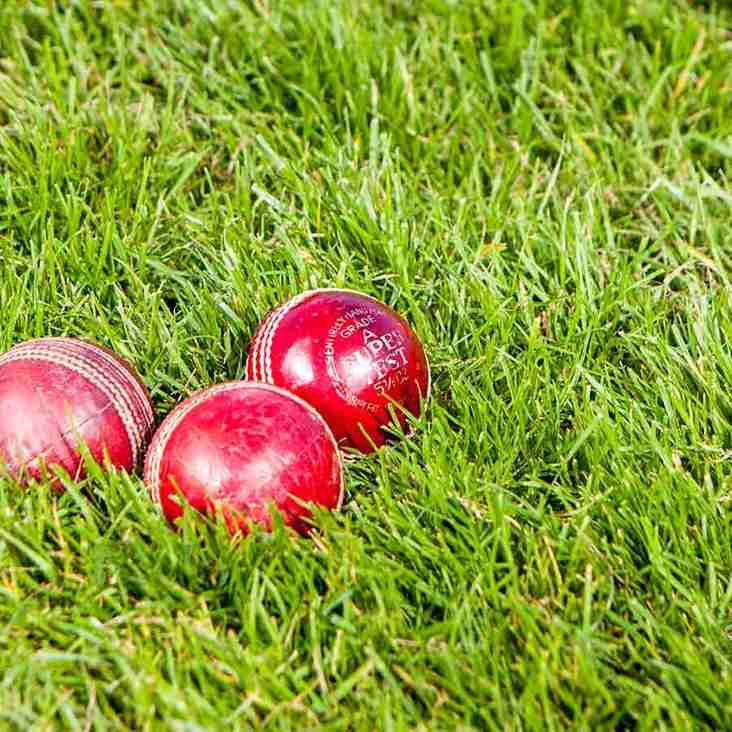 School Holidays Cricket Coaching Course