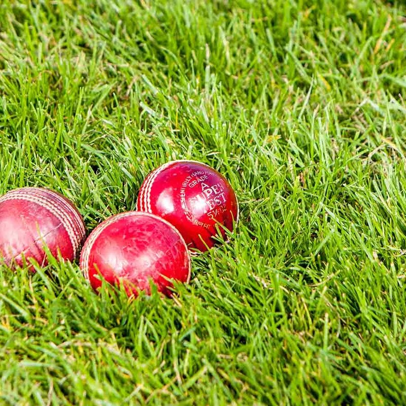 Can You Spare £15 for a Cricket Match Ball?