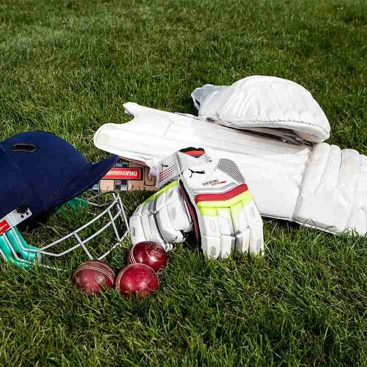 Junior Cricket at RHC - summer 2019