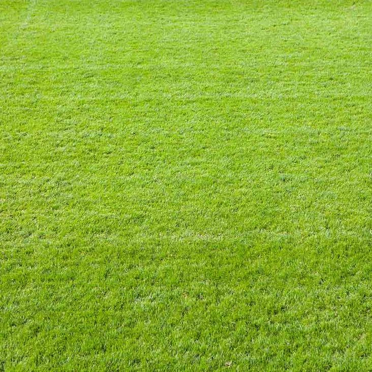 Planning permission for Artificial Pitch granted by Eden District Council<