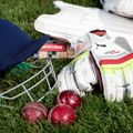 Glenrothes Cricket Club 214/7 - 184 Watsonian 4s
