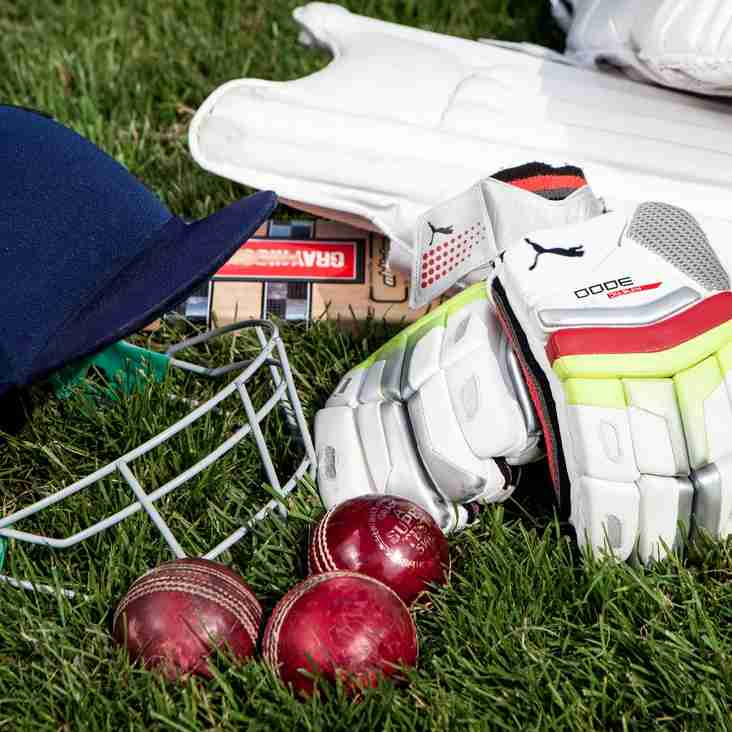 Junior Cricket Starts this Week