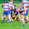 Young Colts Secure The Win