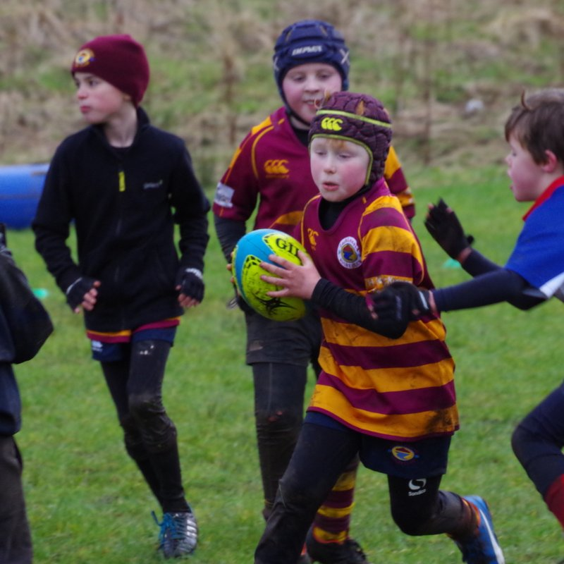 Minis Welcome Strathendrick and Allan Glens