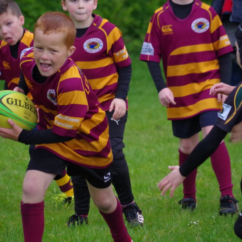 Minis Play Super Rugby at Helensburgh