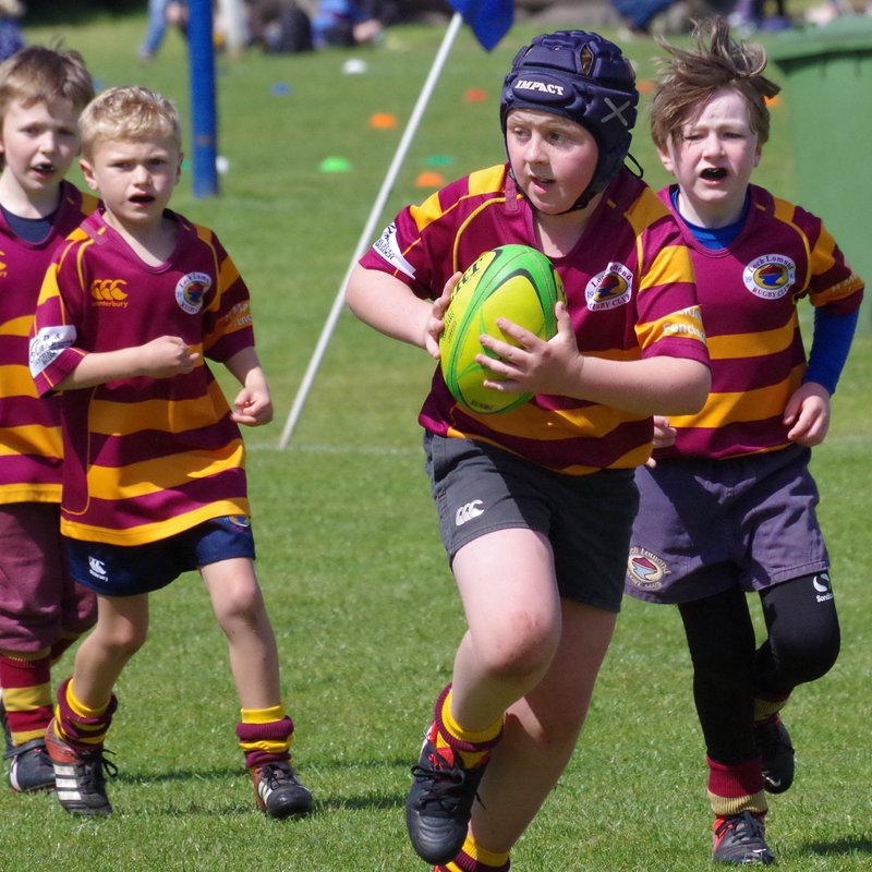 Minis Play at West's Festival