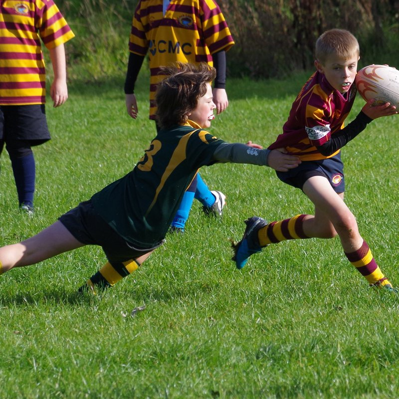 Minis host Cumnock, Helensburgh and Stirling at the Club