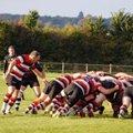 Frome RFC 1st 15 - 14 Sherborne RFC 1st