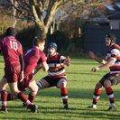 Swanage & Wareham RFC 1st 15 - 17 Frome RFC 1st