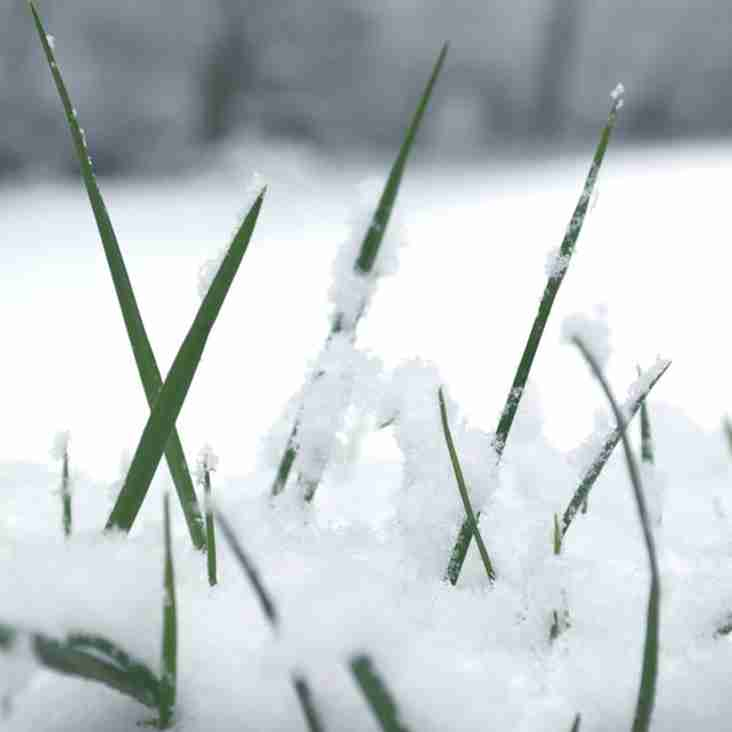 All Mini & Junior rugby cancelled