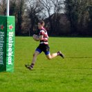 Frome RFC 2nd 43 - 0 Cricklade RFC 1st