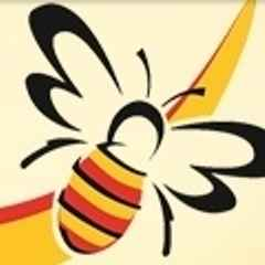 Saturday Matchday Action - its Birmingham & Solihull Bees!