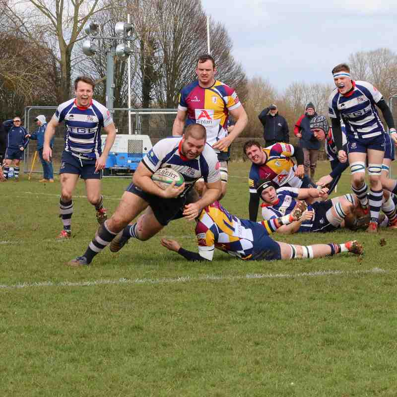 Oxford Harlequins v Bulls - Sat 17th Feb '18