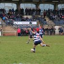 Brave Bulls run ends vs Marlborough