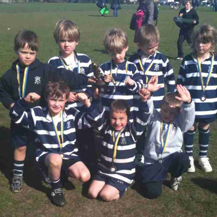 WESTCOMBE PARK RFC UNDER 6'S JOINT WINNERS OF UPMINSTER FESTIVAL