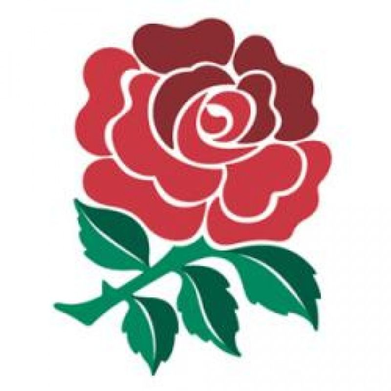 QUILTER INTERNATIONALS - TWICKENHAM 2018 : MEMBERS TICKET APPLICATION FORM