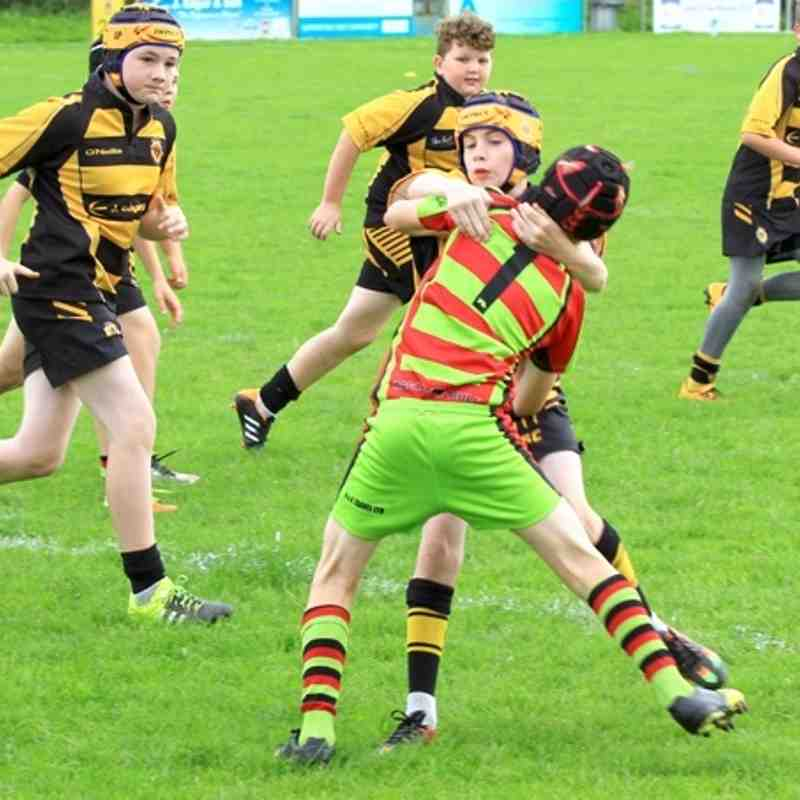 Season 2016 u11s League Wath Brow v Broughton Red Rose