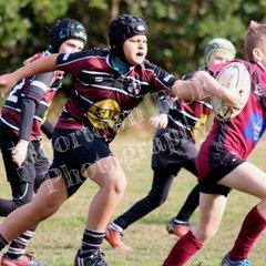 Acorn 2018: Old Rish v Morley