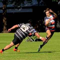 Championship A Division v Perth Bayswater - 30th May 2015