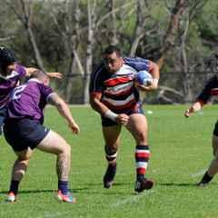 Championship A Division v Rockingham