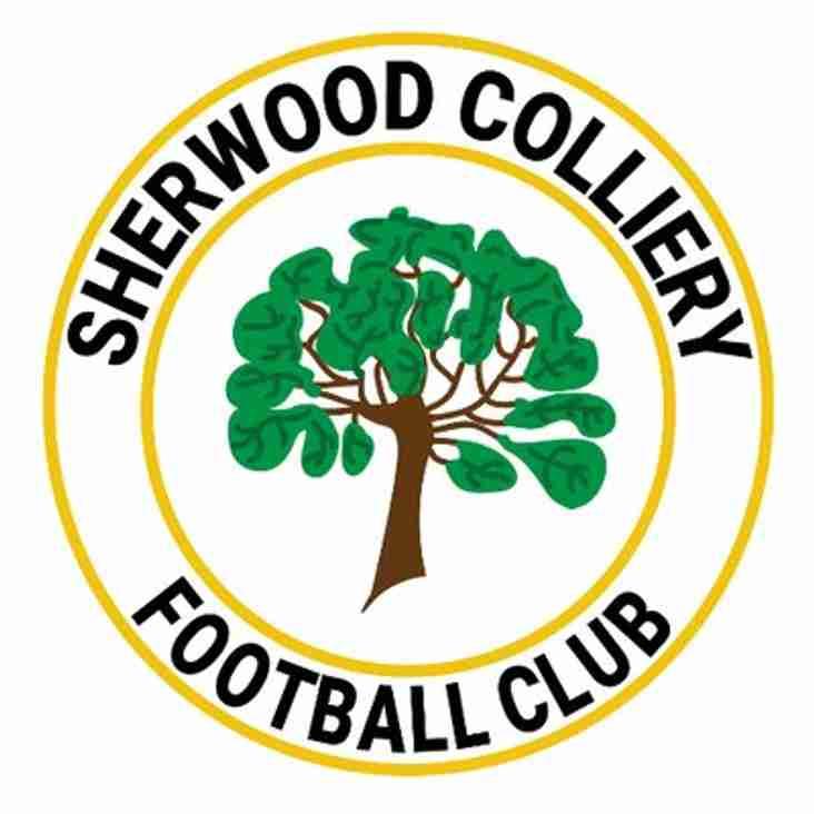 Groundsman Day at Sherwood Colliery