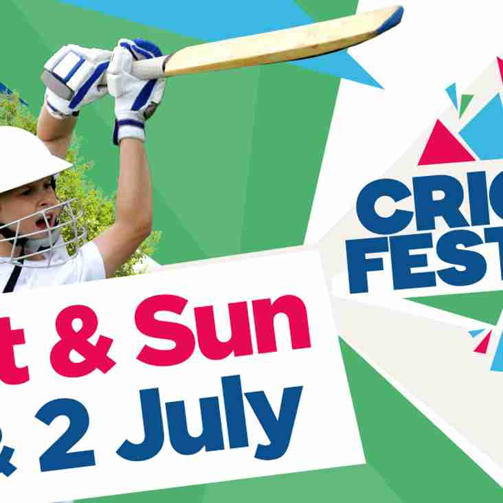 It's a CricketFest at Yapham CC this weekend!