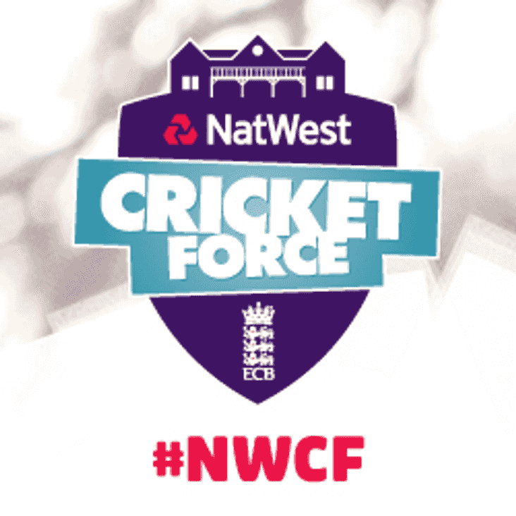 Cricketforce jobs to be done Saturday, March 24th