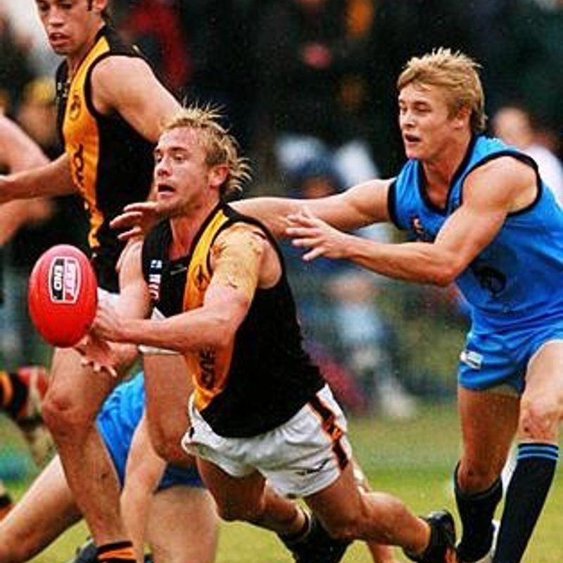 Glenelg Tigers (our partner club in the SANFL)