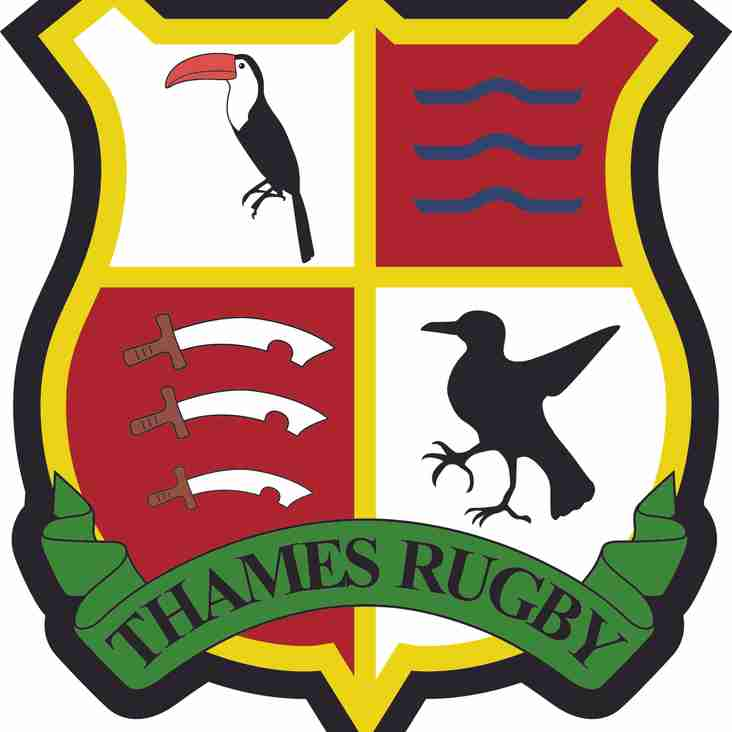 Thames Rugby continue their rebirth