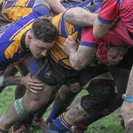 Amber and Blues Too Hot for Benger