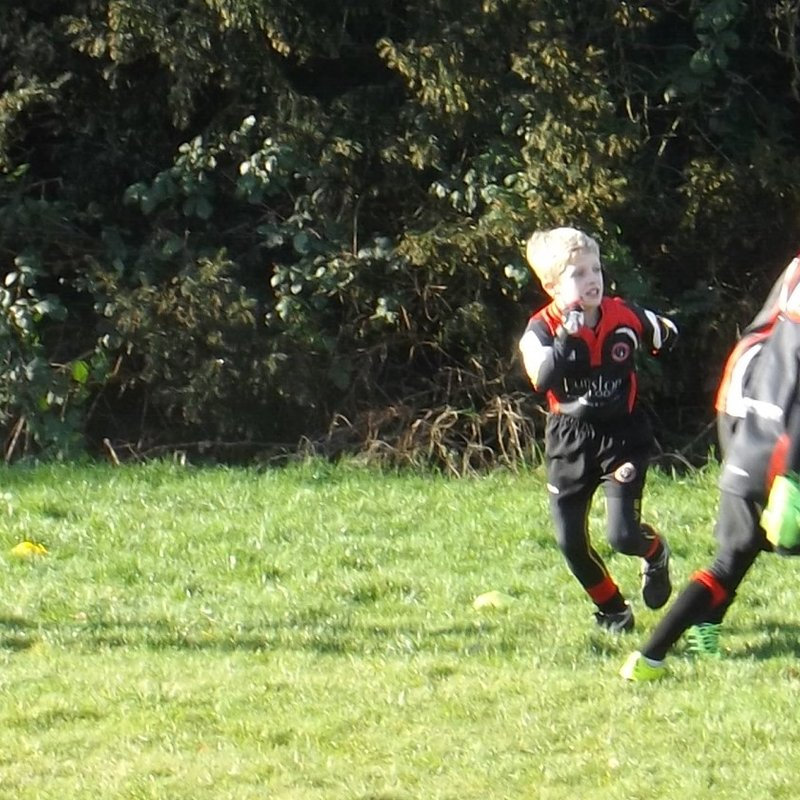 U8's Travel South to the Sun