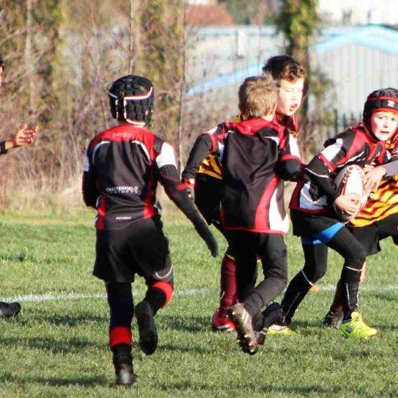 U10s v Sheffield Tigers