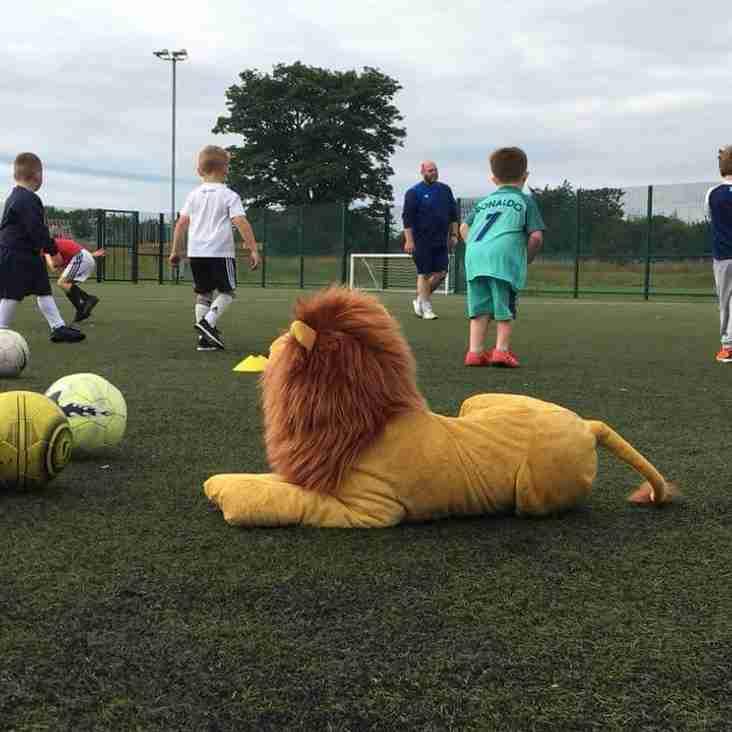 Lions Roar on