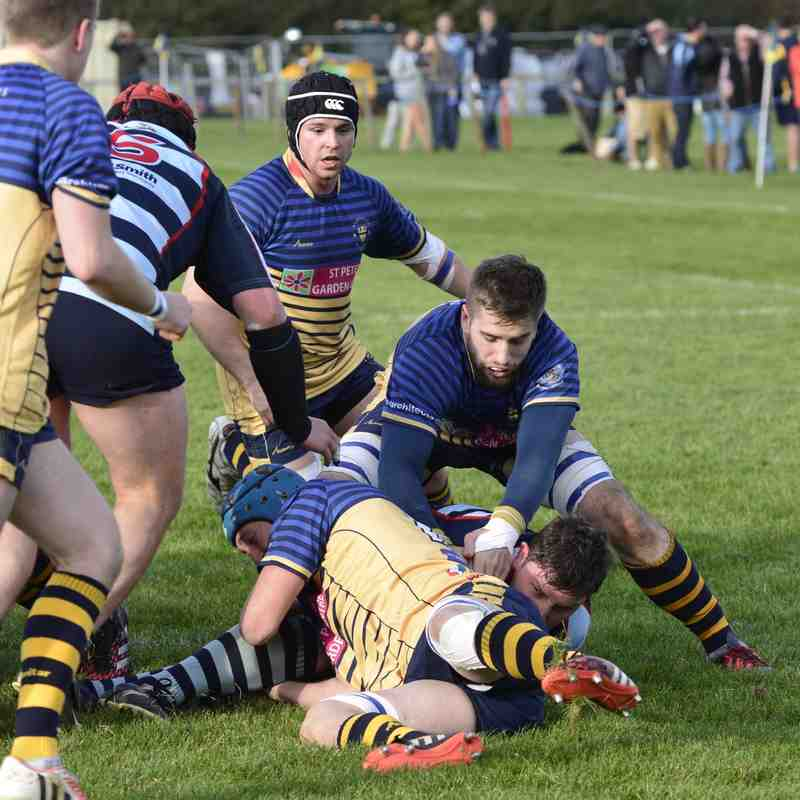 Wanderers 1st XV v Dudley Kingswinford October 2016