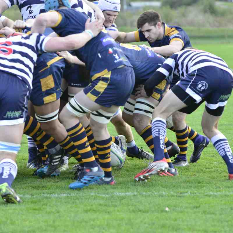 Wanderers 1st XV v Stourbridge Lions 30 October 2017