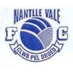 Nantlle Vale