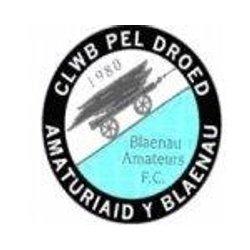 Blaenau Amt