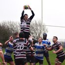 Hastings & Bexhill: 10  -  Beccehamian: 15