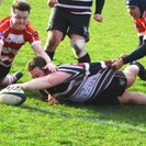 Beccehamian RFC 47   Crowborough RFC 29
