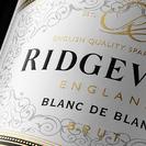 Ridgeview wine Estate Man of the match is Paul Hasib