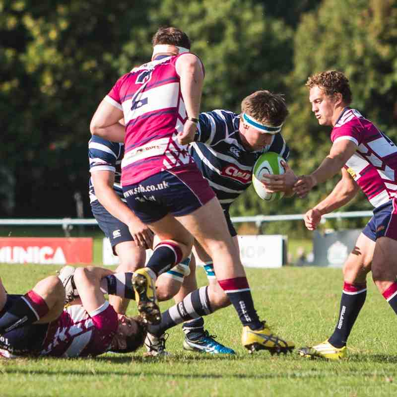 Combe vs Shelford - 1 October 2016